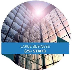 Large Business Phone Systems Avaya Hybrex