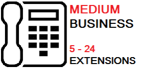 Business Icon medium