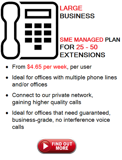 Large Business Icon Phone Plan