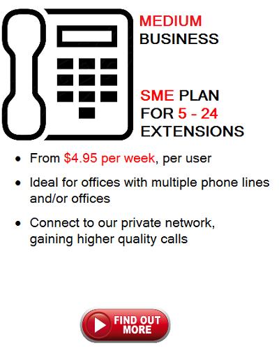 Medium Business Icon Phone Plan